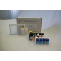 Тест-система иммуноферментная для определения антител к вирусу гепатита А «ГЕПА-АТ-Т» (96 анализов)