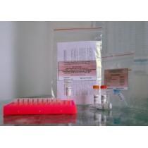 Тест-система для выявления энтеровирусов методом ПЦР с гибридизационно-флюоресцентной детекцией продуктов реакции «ЭВ-ПЦР»